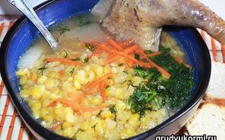 Можно ли гороховые супы при грудном вскармливании младенца