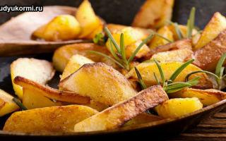 Можно ли жареную картошку кормящим мамам в первые месяцы грудного вскармливания