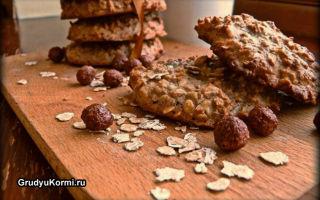 Польза и вред овсяного печенья при грудном вскармливании