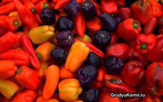 За и против болгарского перца при грудном вскармливании