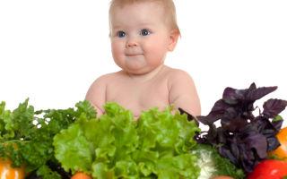 Последовательность введения овощей для первого прикорма