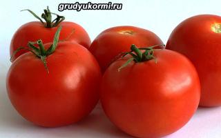Блюда из помидоров при грудном вскармливании