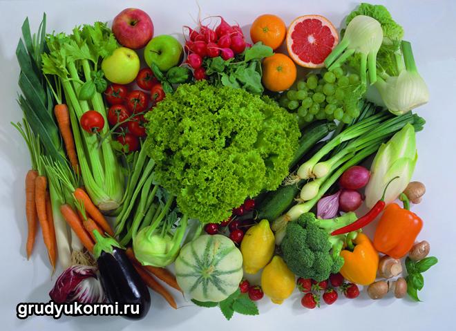 Различные овощи и фрукты
