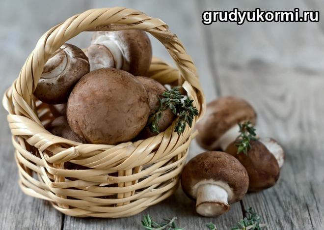 Лукошко с белыми грибами