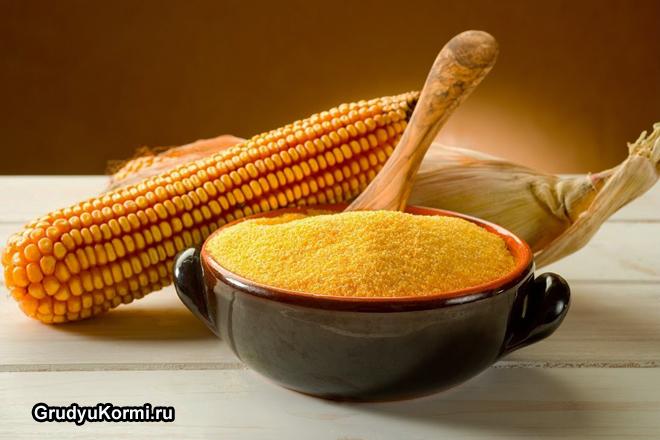 Початок кукурузы и крупа